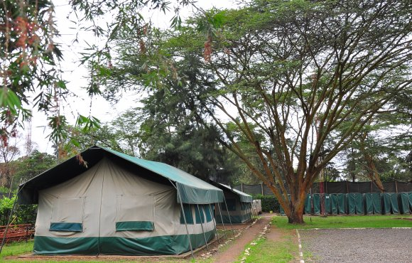 Boarding tents